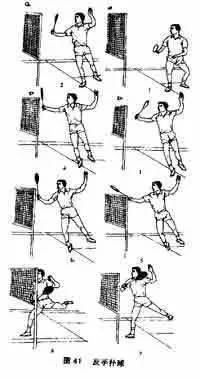 羽毛球培训